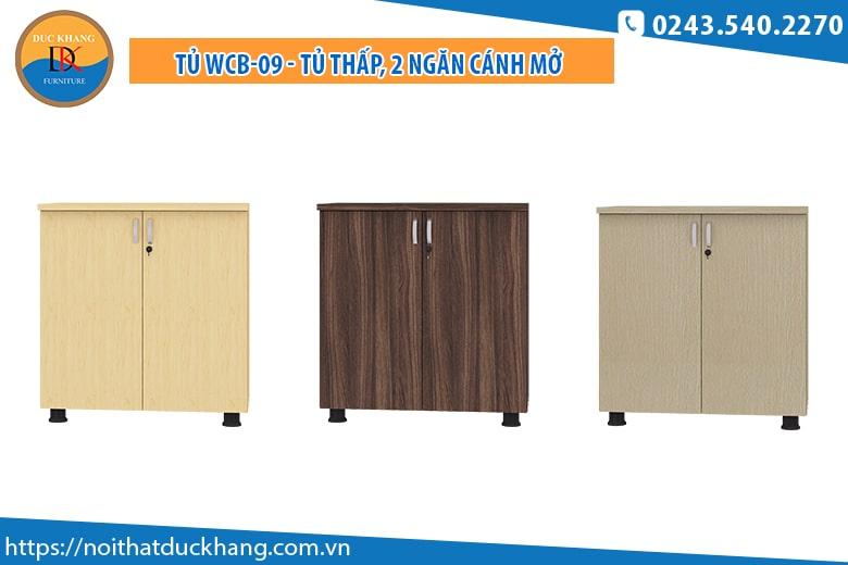 Tủ WCB-09 - Tủ thấp, 2 ngăn cánh mở: Giá 926.000 đồng