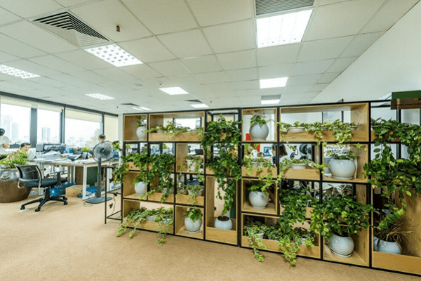 Không thể thiếu cây xanh trong phong cách thiết kế văn phòng xanh