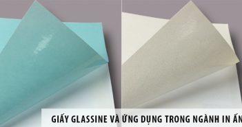 Giấy Glassine và ứng dụng trong ngành in ấn